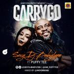 carrygo blog 1