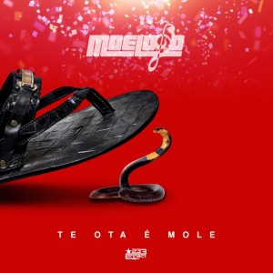 Moelogo-Te-Ota-E-Mole-Artwork-696x696
