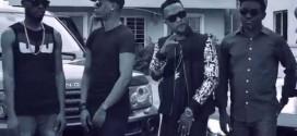 VIDEO: TM 9ja | Magawu (Remix) Ft Reminisce & Vector @tm9ja