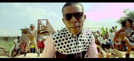 New Video: Small Doctor – Mosquito Killer
