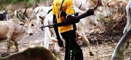 Herdsman Stabs Farmer To Death In Nasarawa