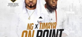 NG X Timaya – On Point (Prod. By Jiggy Jegg)