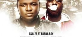VIDEO: Skales – Temper (Remix) ft. Burna Boy