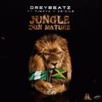 Drey-Beatz-–-Jungle-Don-Mature-Ft.-Timaya-Ce'cile-696x695