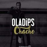 Ola-Dips-Cache-480x381-300x300
