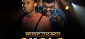 Swazzi ft Cabo Snoop – Skolo Remix (Prod By DJ Coublon)