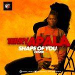 Terry-Apala-–-Shape-of-You-Ed-Sheeran-Cover-696x696