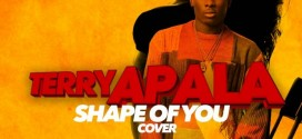 Terry Apala – Shape of You (Ed Sheeran Cover)