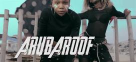 VIDEO PREMIERE: ARUBAROOF – IKWOO AKA @arubaroof @basebaba1