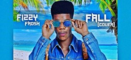 Fizzy Frosh – Fall (Davido Cover)